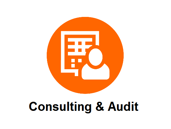 Consulting & Audit