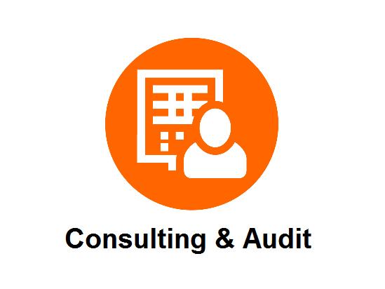 Consulting & Audit